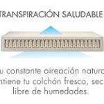 transpiracion saludable