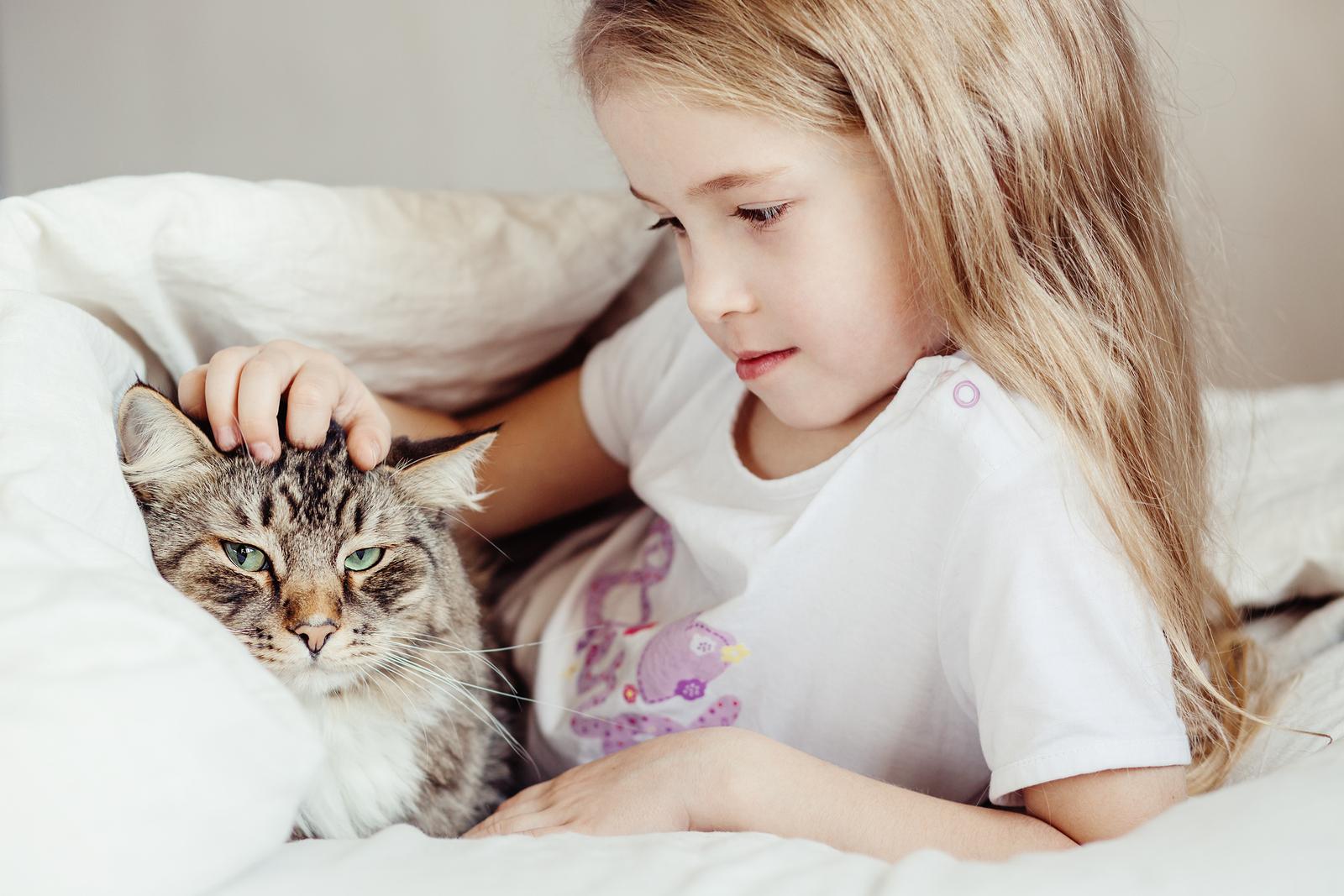 dormir con las mascotas en el mismo colchón
