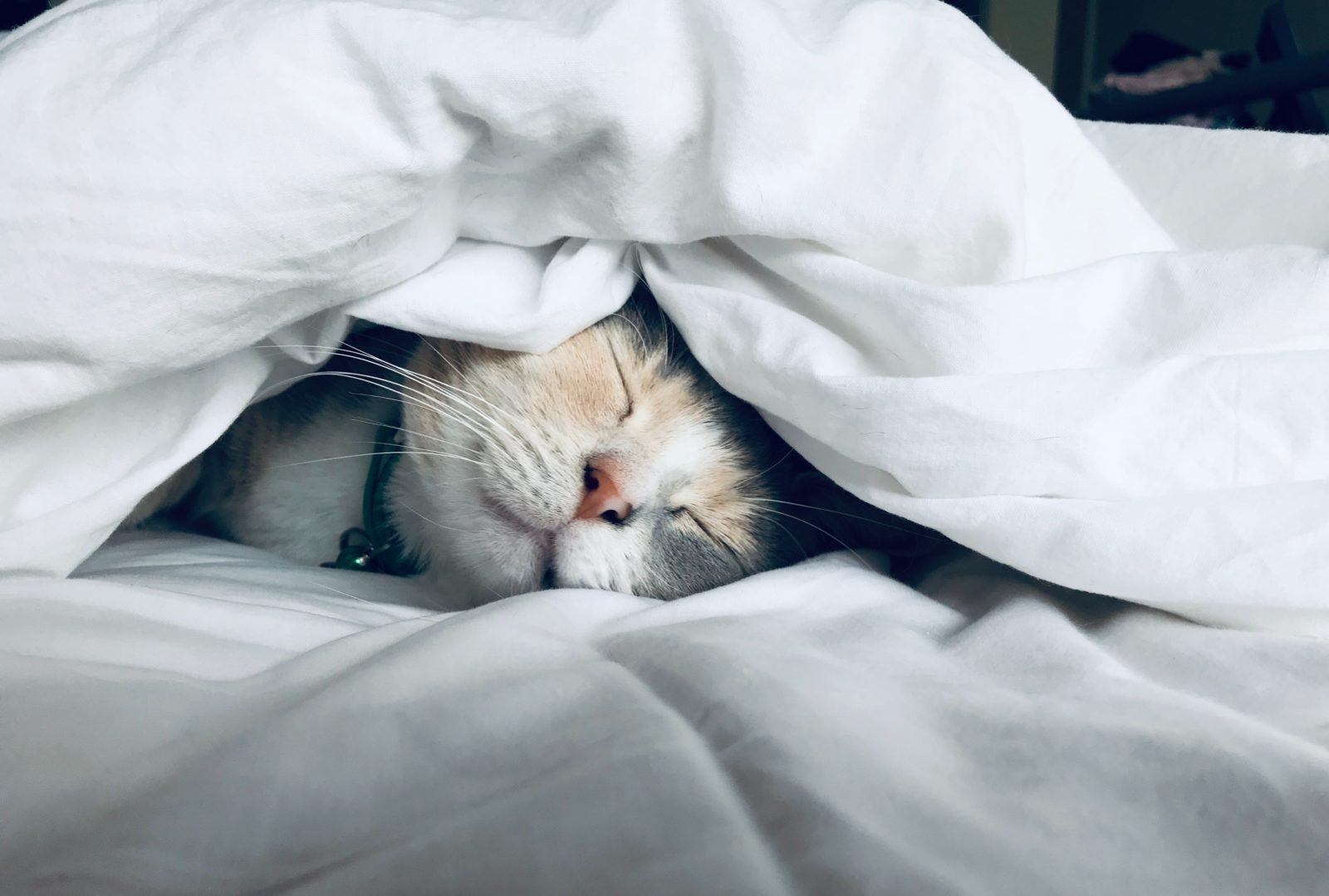causas de no dormir bien